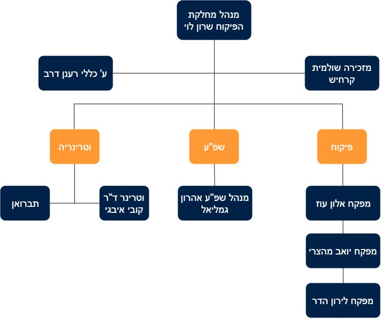 מבנה המחלקה