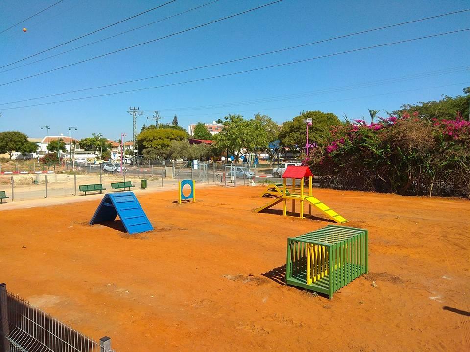 פארק כלבים (2)