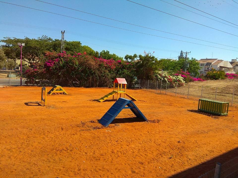 פארק כלבים (3)